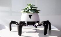 Acest robot iți plimbă planta și dansează când trebuie să o uzi