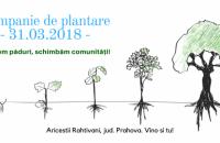 ROCKWOOL se alătură acțiunii de împădurire Marea Plantare din județul Prahova