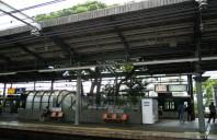 Gara construita in jurul unui arbore secular
