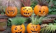 Decoratiuni pentru Halloween - partea I Unde ne zboara mintea atunci cand ne gandim la decoratiuni