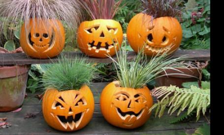 Decoratiuni pentru Halloween - partea I