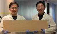 Un nou material de lemn care este la fel de puternic precum oțelul Cercetatorii de la