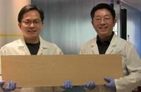 Un nou material de lemn care este la fel de puternic precum oțelul