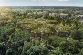 Sediul central al Ocolului Silvic Ceh pare că se contopește cu pădurea