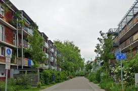 Un experiment radical: Cartierul fără locuri de parcare, două decenii mai târziu
