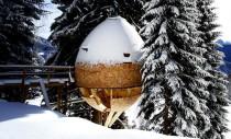 Casa din copac în formă de ou oferă o priveliște uimitoare către Alpii italieni