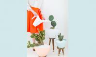 Cand ghivecele cu flori devin adevarate accente decorative Va prezentam in continuare trei sugestii inedite pentru