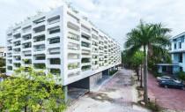 Spatii de birouri intretesute cu zone de vegetatie