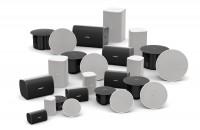 Divizia Bose Professional prezintă boxele DesignMax Modelele DesignMax variază de la profile de 2 inch până la difuzoare de compresie high-SPL de 8 inch. Toate modelele conferă sunet impresionant, fără a