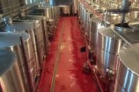 Unify.Co.Ltd. - lucrari de pardoseli sintetice la crame de vin in zona Dobrogei