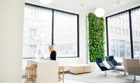 Care este legătura dintre un perete vegetal și inteligența artificială? Compania finlandeza Naava a proiectat un
