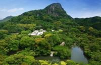 """Parcul gigantic japonez transformat într-o pădure de lumină psihedelică O echipa japoneza de arta colectiva a tranformat in Japonia un parc de 5 milioane de metri patrati intr-o luminoasa padure denumita si """"Padurea in care traiesc zeii""""."""