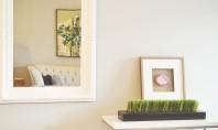 Idei despre cum să decorezi un spațiu interior cu oglinzi decorative Există numeroase obiecte cu care