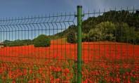Stalpii rotunzi - potriviti pentru orice tip de gard metalic Decorio a identificat si recomanda cea