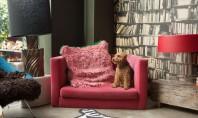 O casa din East London cu atmosfera plina de dramatism si mister Viziunea lui Abigail Ahern