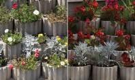 Jardinierele - secretul amenajarilor de primavara Iti propunem sa optezi pentru amenajarea cu jardiniere decorate cu