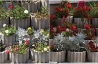 Jardinierele - secretul amenajarilor de primavara