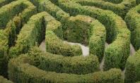Cum gestionăm modificările aduse contribuțiilor și taxelor la Fondul pentru mediu? Acestea reprezintă o provocare pentru