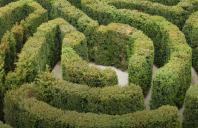Cum gestionăm modificările aduse contribuțiilor și taxelor la Fondul pentru mediu?