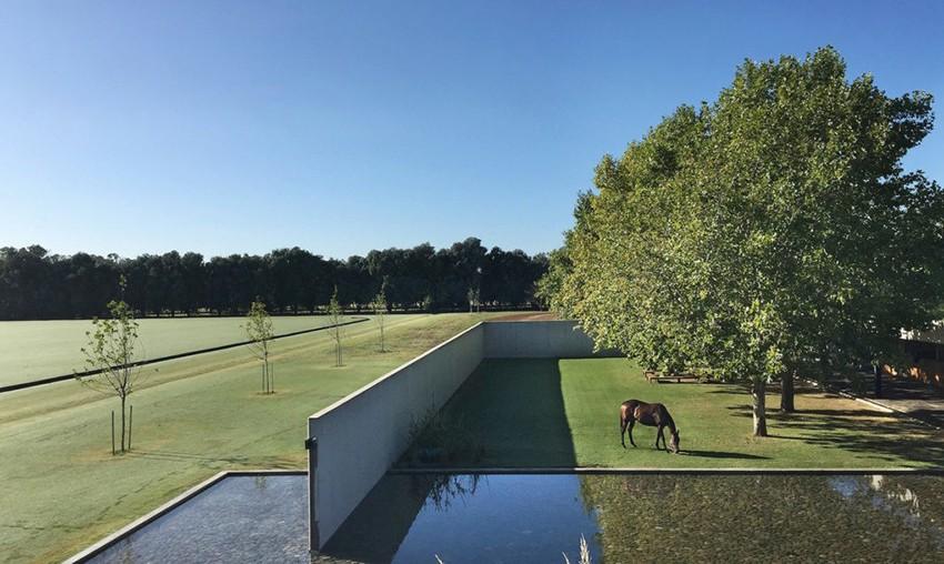 Acoperișul verde pe care caii pot să pască în liniște