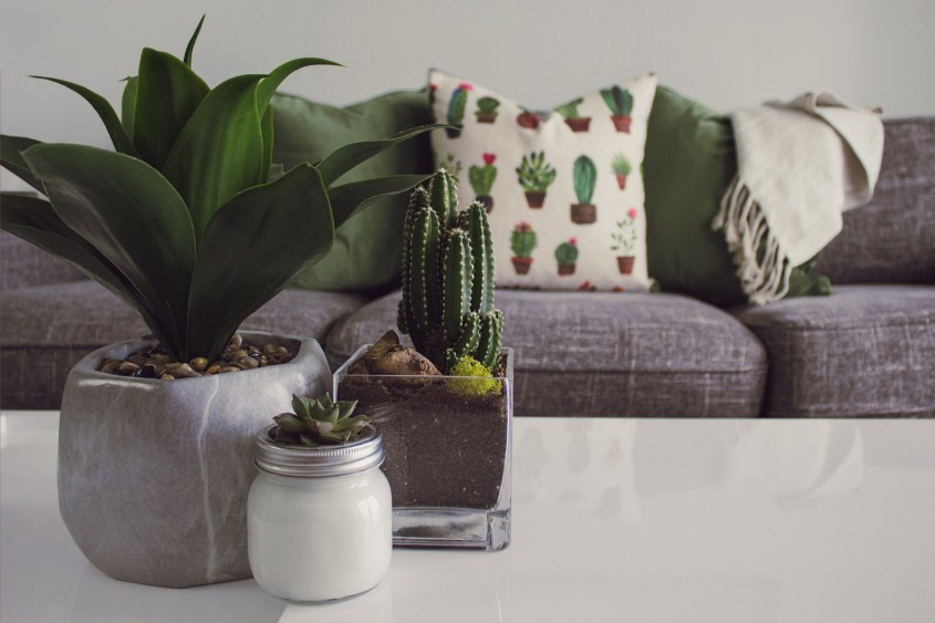 Cum aleg pernele decorative potrivite pentru living? SOS, designer!