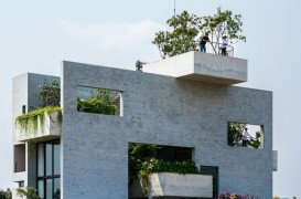 O casa in care predomina vegetatia si se cultiva legume