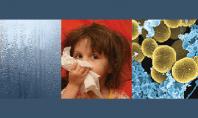 Centralele de ventilatie cu recuperare de caldura de la VENTS - protectie impotriva impuritatilor din aer