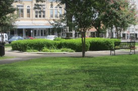 Transformarea maidanelor în spații verzi poate fi un antidot pentru depresie