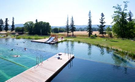 O piscina naturala ne dovedeste ca nu trebuie neaparat sa ne scaldam in clor