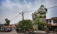 Casa-jardinieră în care proprietarii cresc zeci de specii de plante comestibile Construita pentru un cuplu de
