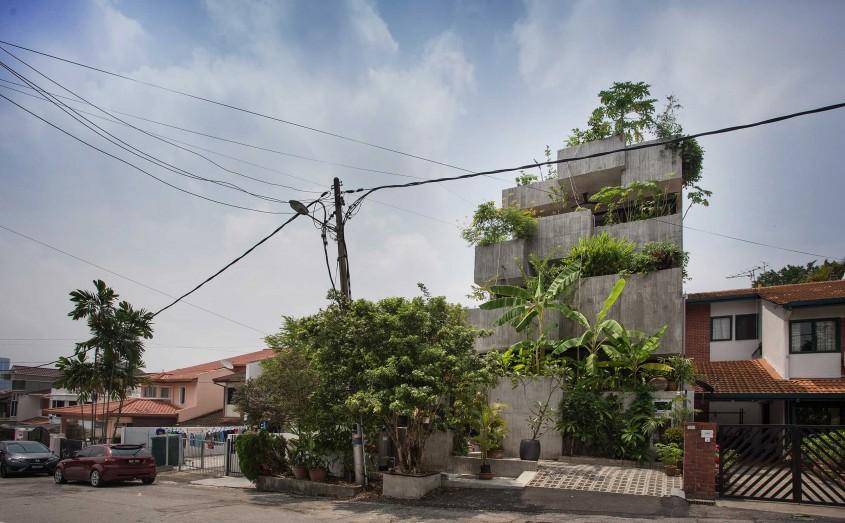 Casa-jardinieră în care proprietarii cresc zeci de specii de plante comestibile