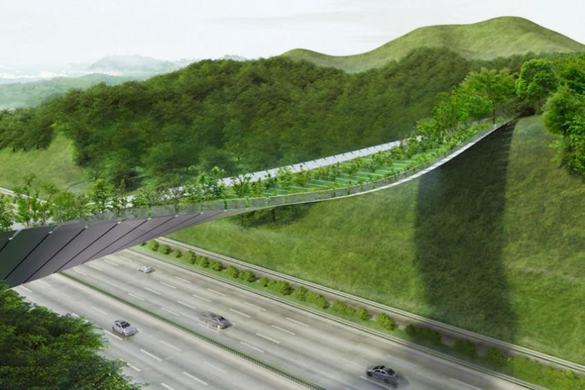 Un pod cu vegetație ține la distanță animalele sălbatice de o autostradă aglomerată