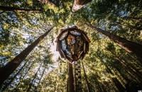 O căsuță în pădure ca un con de brad Numita Pinecone (Conul), casuta este imbracata in 64 de panouri transparente in forma de diamant, oferindu-le celor din exterior acces neingradit la privelistea