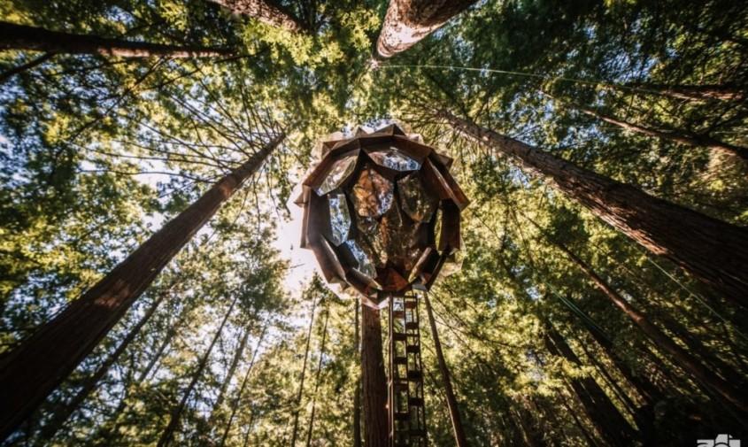 O căsuță în pădure ca un con de brad