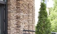 Fasiile din piatra naturala - efect wow in amenajari Fasiile din piatra naturala au un aspect