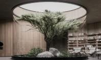 Planul B o casă subterană cu un arbore în mijlocul livingului Din afara casa poate fi