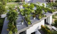 O terasa plina de vegetatie amenajata pe acoperisul casei Echipa de la biroul Vo Trong Nghia