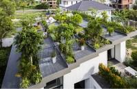 O terasa plina de vegetatie amenajata pe acoperisul casei