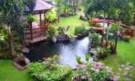 Da viata gradinii cu un bazin decorativ! Daca mai demult v-am vorbit despre amenajarea piscinelor astazi