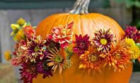 Dovleci gutui si alte decoratiuni! Frunzele ingalbenite gutuile sau dovlecii vor fi mereu asociate anotimpului toamna