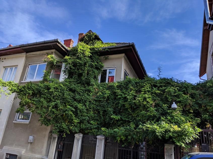 Scrisoare către Guvernul României despre alocarea de fonduri pentru reabilitarea termică a clădirilor