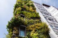 Un hotel de invidiat, cu gradini verticale!