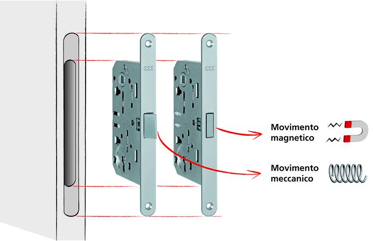 Mediana Polaris - broasca magnetica