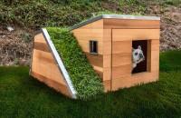 """Cea mai verde și mai modernă casă pentru cel mai bun prieten al omului Conceptul de cladire """"verde"""" nu se aplica doar speciei umane, ne arata biroul californian Studio Schicketanz. Arhitectii au proiectat casa de vis pentru"""