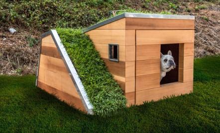 Cea mai verde și mai modernă casă pentru cel mai bun prieten al omului