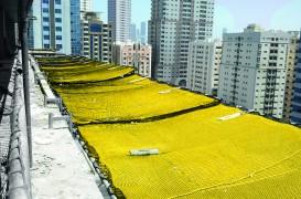 Siguranța în lucru, un aspect esențial în construcții: Plasele de protecție Doka