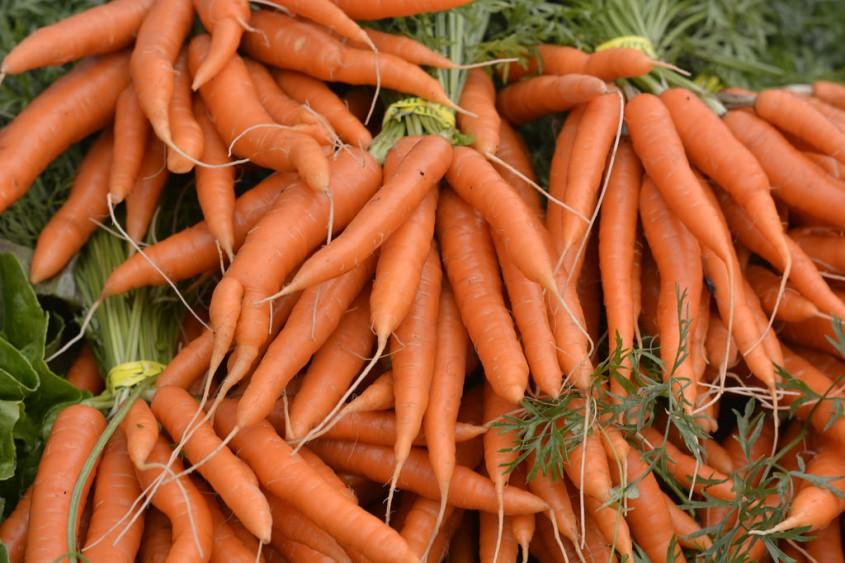 Sfecla și morcovii, soluția pentru un beton mai verde și mai rezistent?