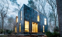 Volumul unei case este mascat de trunchiuri de copac
