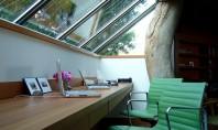 Cum amenajezi biroul pentru a crește productivitatea? Sfaturi pentru angajatori și angajați Indiferent ca esti angajat