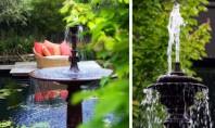 Elemente decorative in amenajarile care utilizeaza apa in diferite ipostaze Amenajările care includ apa pot include